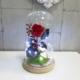 Rosa preservada roja en cúpula de la Bella y la Bestia