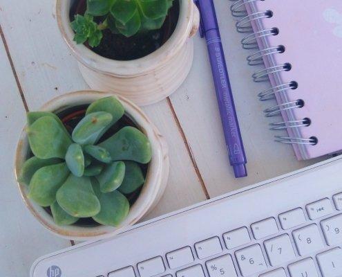 cactus junto a tu ordenador