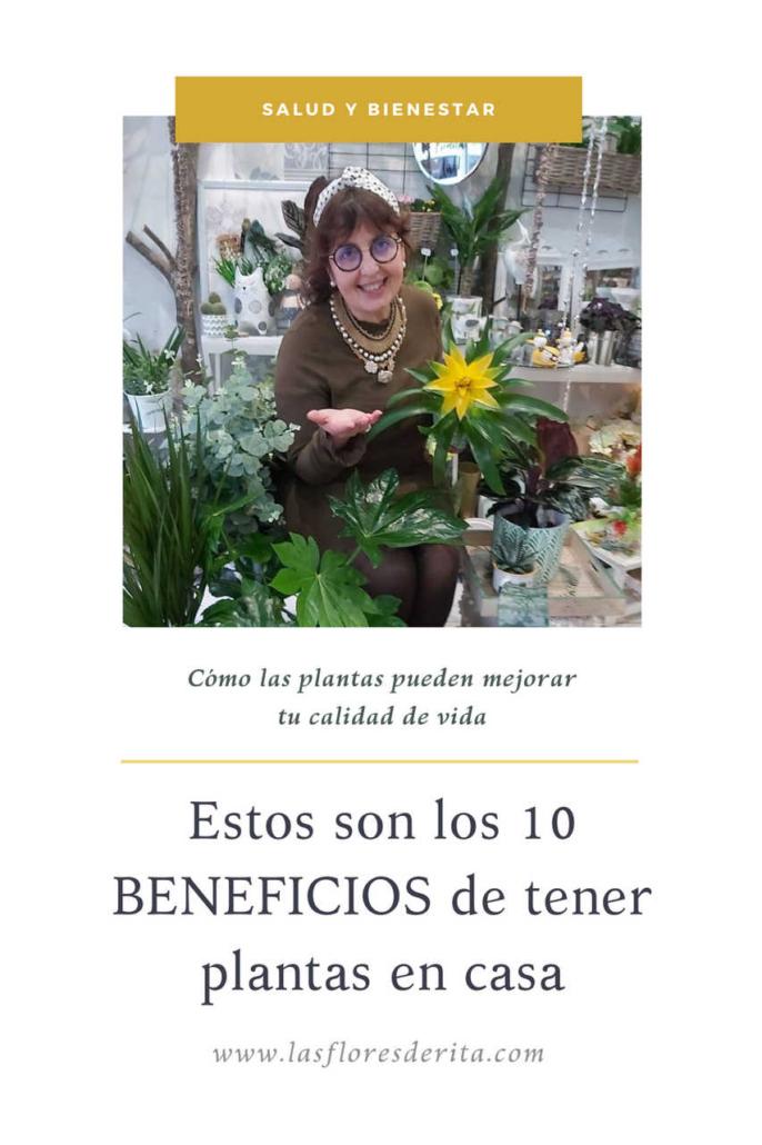 Los 10 beneficios de tener plantas en casa, Rita en la tienda rodeada de plantas