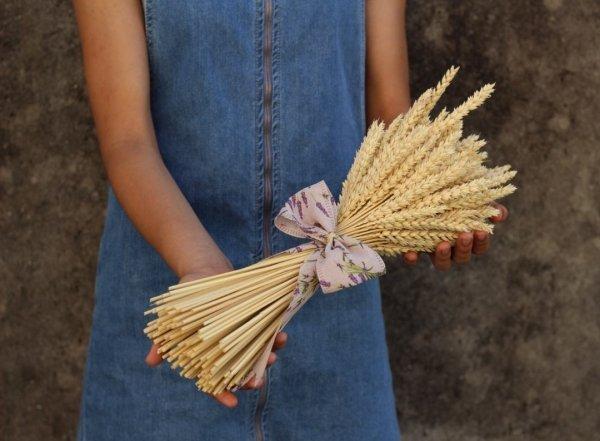 Espigas decorativas de trigo para regalar a tu persona favorita