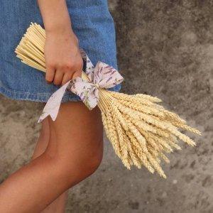 Espigas decorativas de trigo para enviar a tu casa