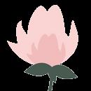 flor/las flores de rita