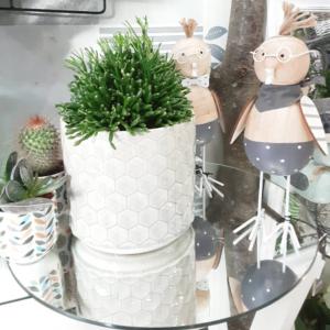 Maceta con ilustración geométrica para decorar la casa con plantas