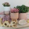 Macetas de cerámica para decorar bonito tu hogar con plantas