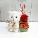 Osito de peluche con rosa eterna para comprar online y enviar a domicilio