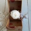 Rosa blanca eterna para sorprender a alguien especial