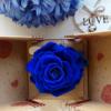 Rosa eterna azul preservada, no se marchita y dura meses o años