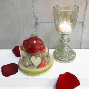 Rosa roja en mini cúpula para regalar en San Valentín y aniversarios