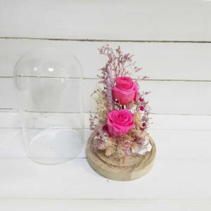 Rosas eternas rosas en cúpula con lindas flores del campo naturales secas
