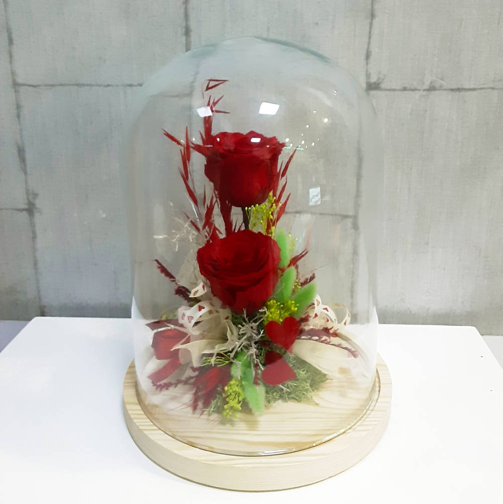 Rosas preservadas en cúpula de vidrio para su mejor conservación en el tiempo.