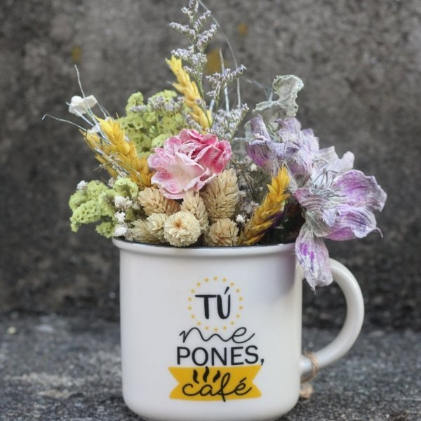 Flores alegres que no necesitan agua para decorar tu oficina