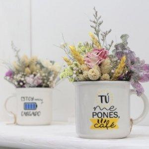 Regalo original con flores que no necesitan agua